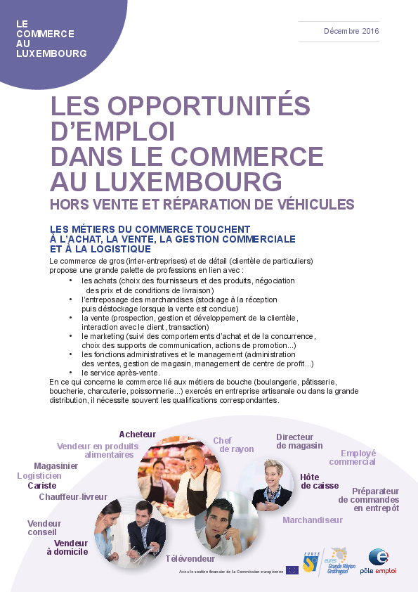 2017 Secteur Commerce Luxembourg